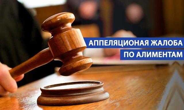 Апелляция по алиментам в 2020 году - судебная практика, образец, пример, бланк, скачать, в течении какого времени