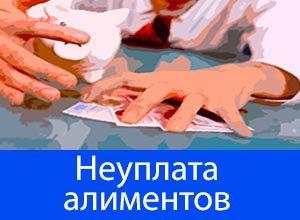 Муж не платит алименты, приставы бездействуют: что делать?