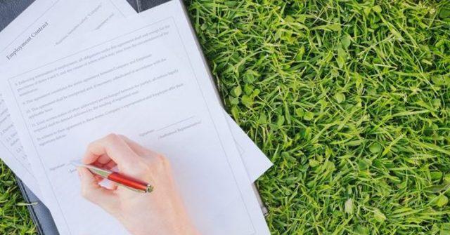 Как оформить земельный участок в собственность сроки, порядок оформления в 2019-2020