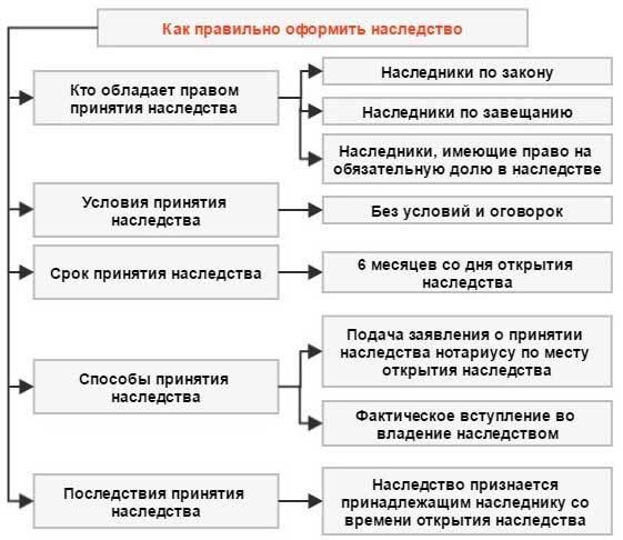 Каковы сроки принятия наследства по закону