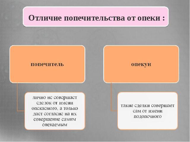 Опекун и попечитель в чем разница, права и обязанности