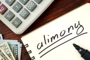 Злостное уклонение от алиментов: уголовное дело по алиментам